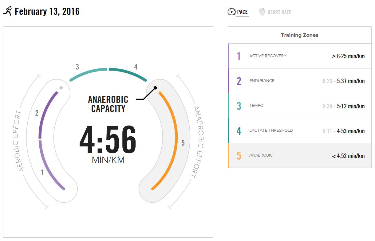 BSXinsight Endurance Test vom 13.02.2016 - Pace