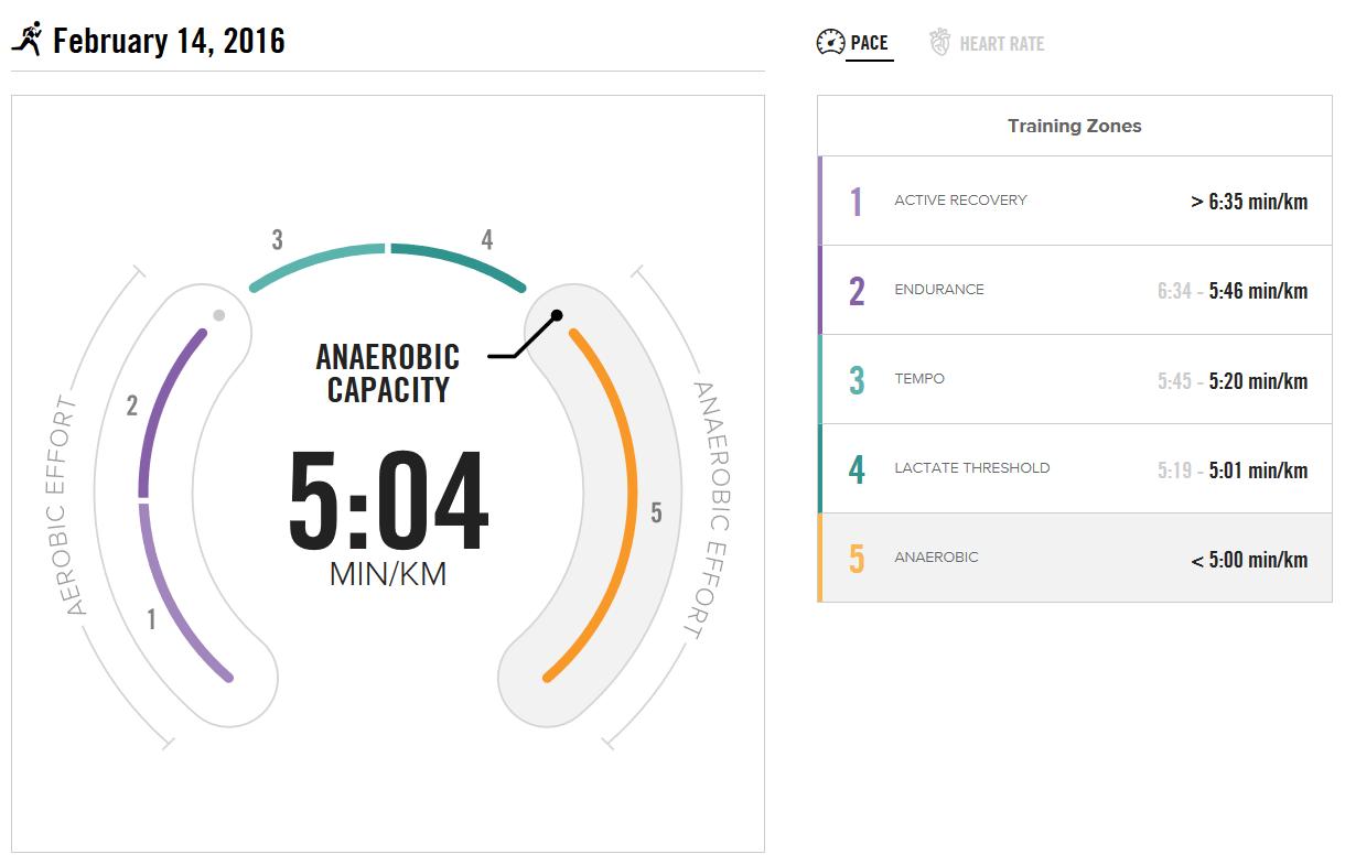 BSXinsight Endurance Test vom 14.02.2016 - Pace